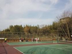 tenis2014.jpg